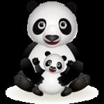 Google обновил алгоритм Panda
